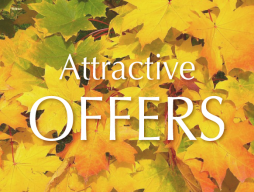 Attractive Offers