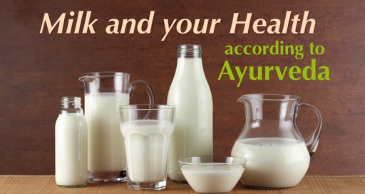 Milk and your health – What Ayurveda teaches us about milk