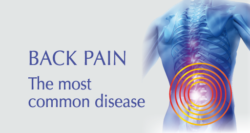 Back pain is the most common disease