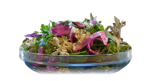 Salad creation with flowers and herbs